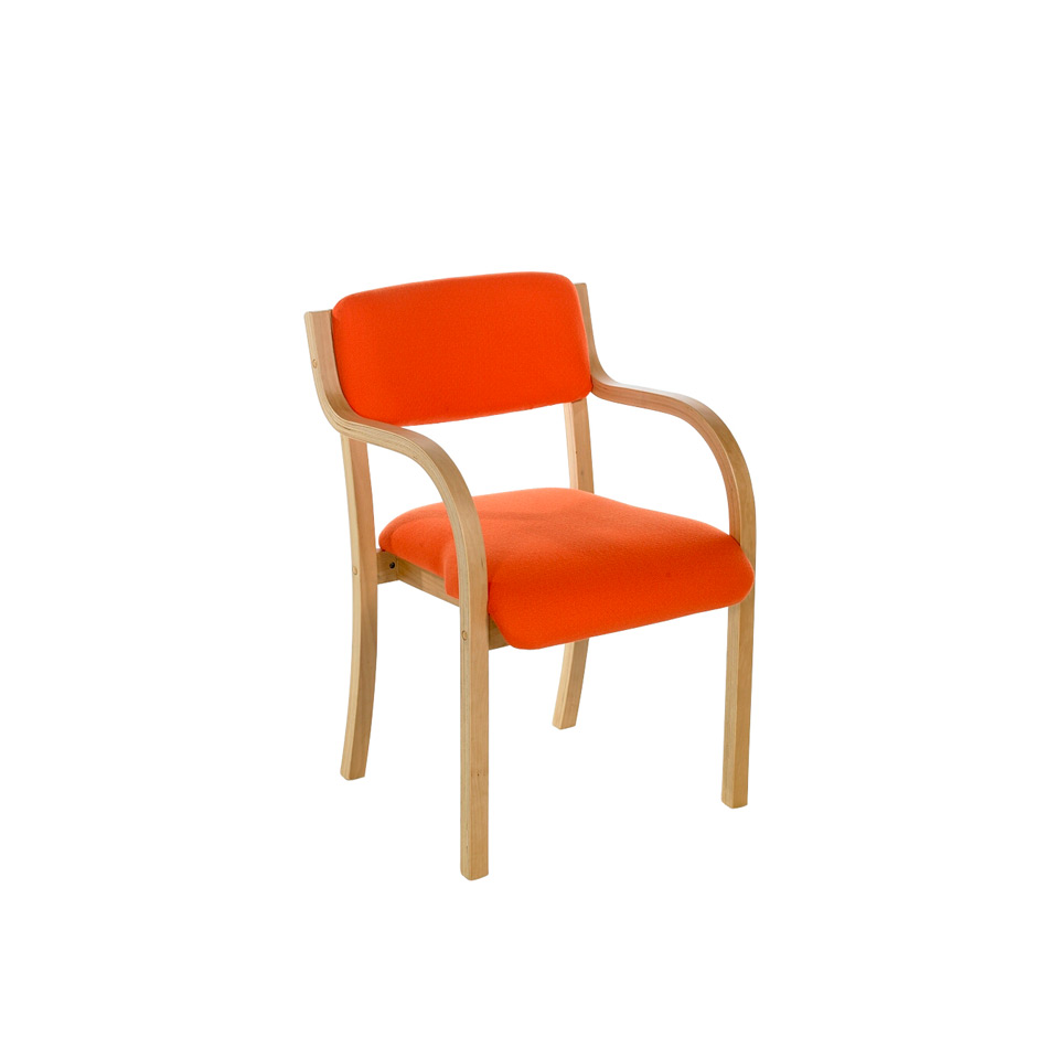 NOE Tyson Meeting Chair