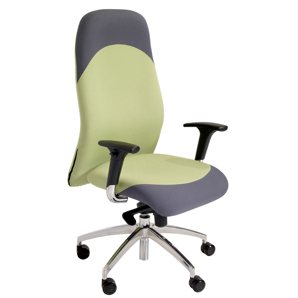 NOE Lion Executive Task Chair